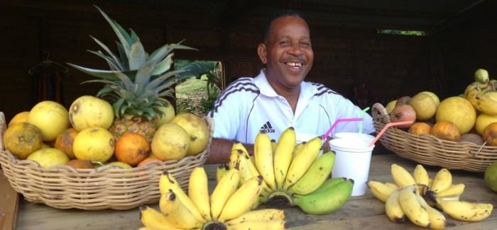 Le bars a jus de Bébert se trouve à l'Anse Noire, en Martinique. Il sert des jus locaux excellents.